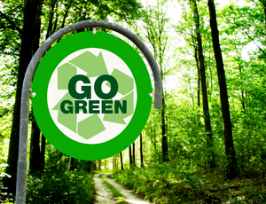 Go Green in 2016